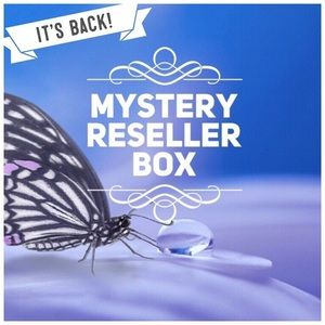 It's back! The Almost Free Mystery Reseller Box 🦋